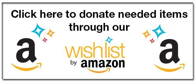 Amazon+wish